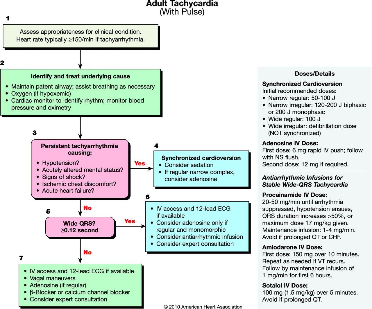 Adult tachycardia with pulse aclsbls pinterest flowchart acls rhythms algorithms adult tachycardia with pulse nvjuhfo Gallery