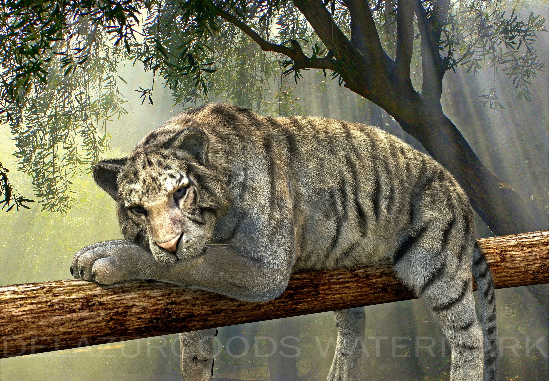 Tiger Removable WallpaperWall DecalPeel & StickHigh
