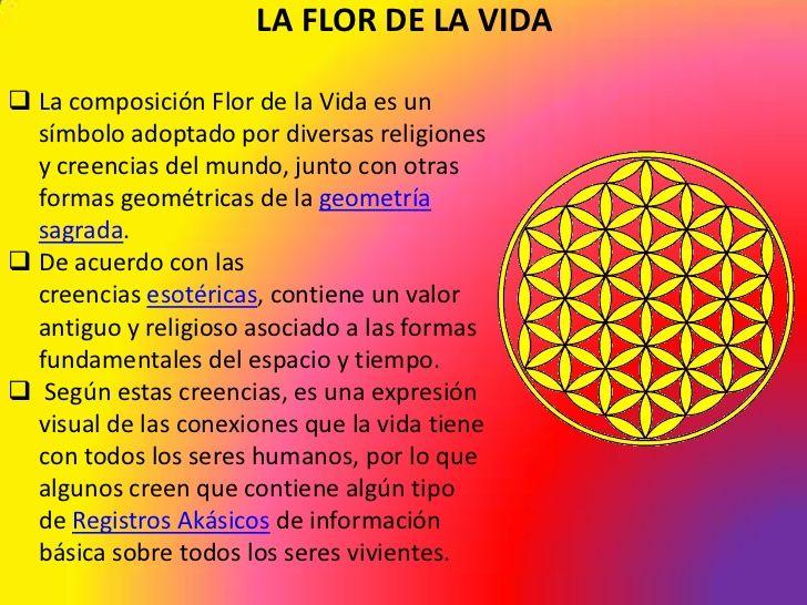 La Flor De La Vida Significado Buscar Con Google Amor Y Vida