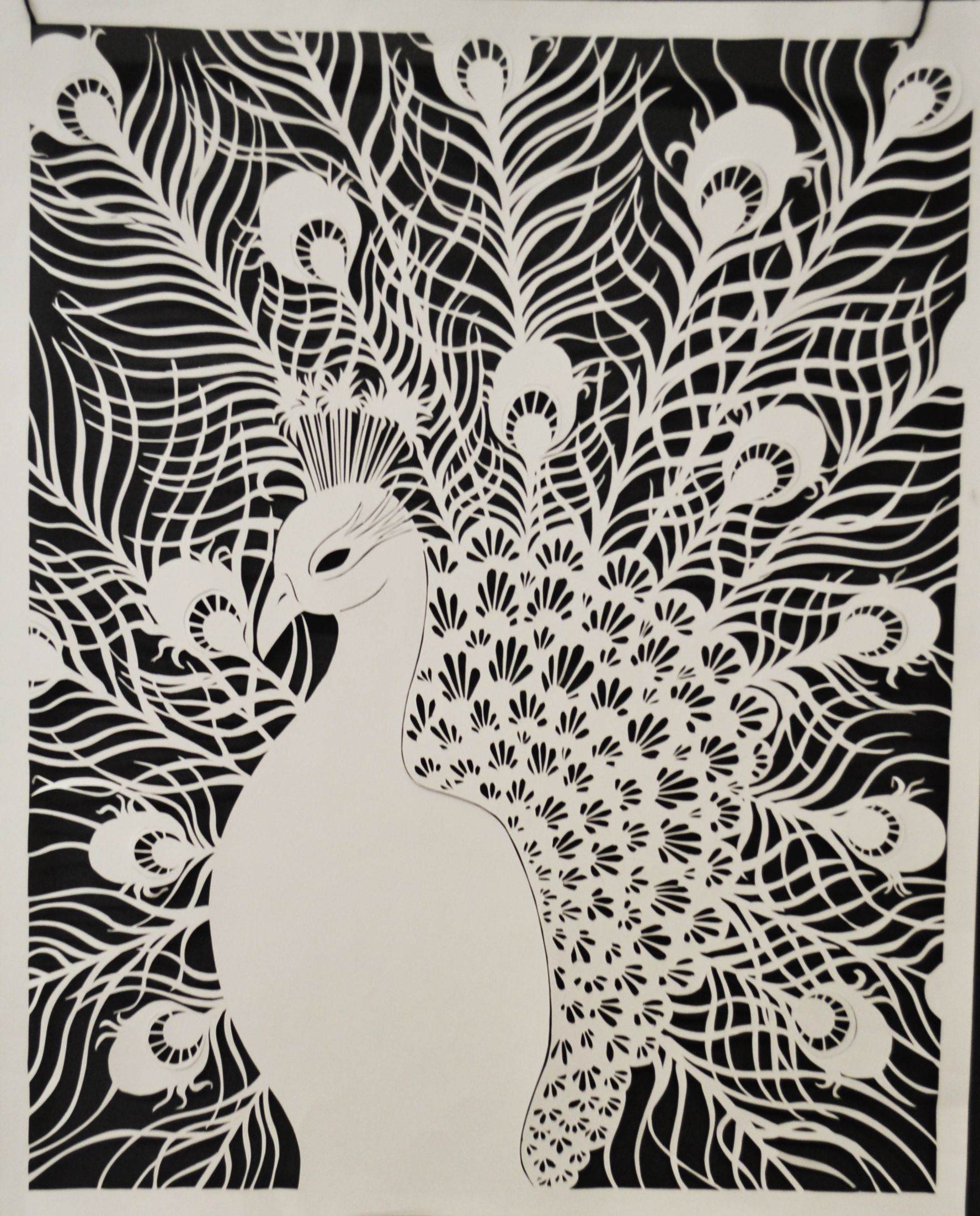 "Peacock, cut out of paper. 18""x 24"". Maria Palkon. 