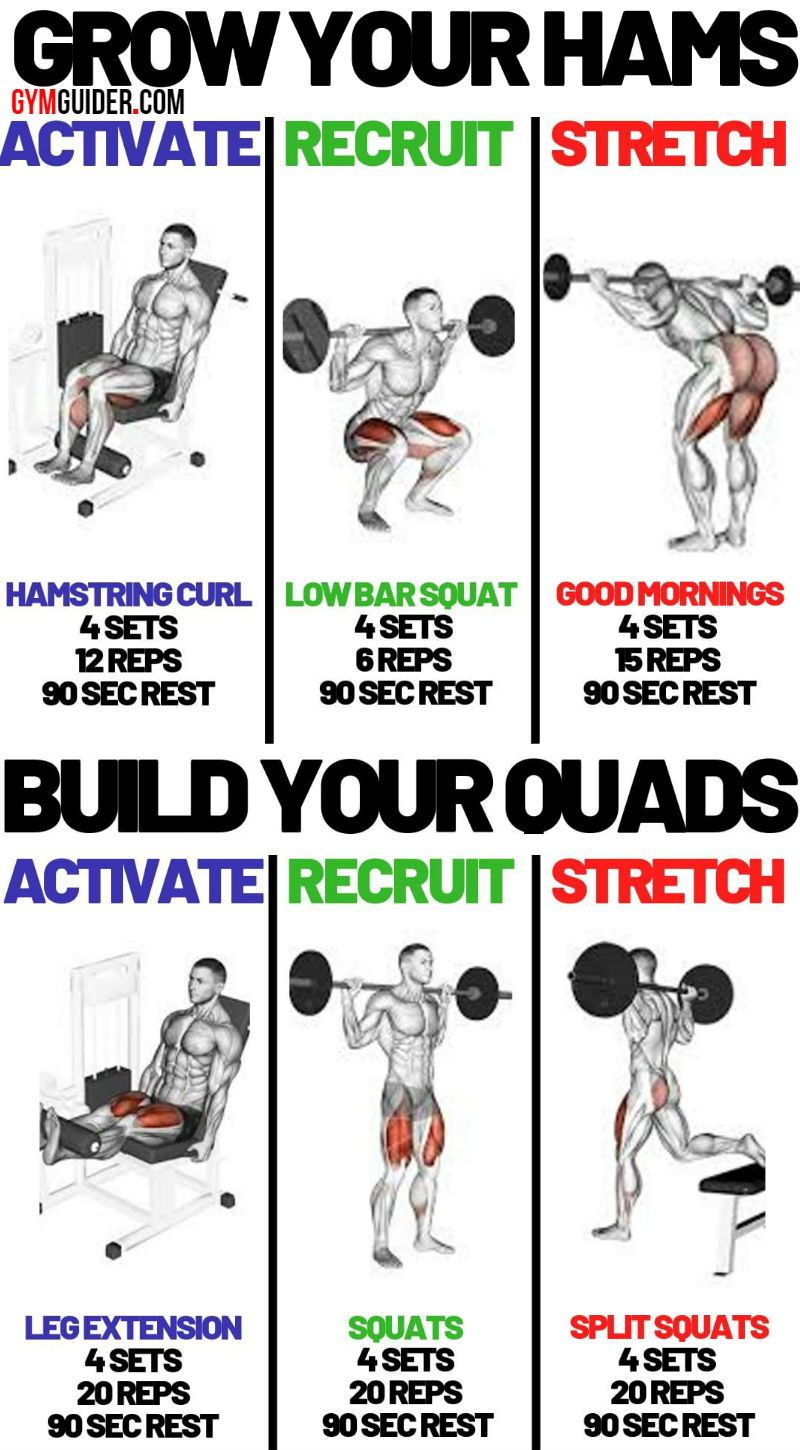 Gain Size And Strength For Muscular Legs In 4 Weeks Gymguider Com Leg Workouts Gym Leg And Glute Workout Glute Workout Gym