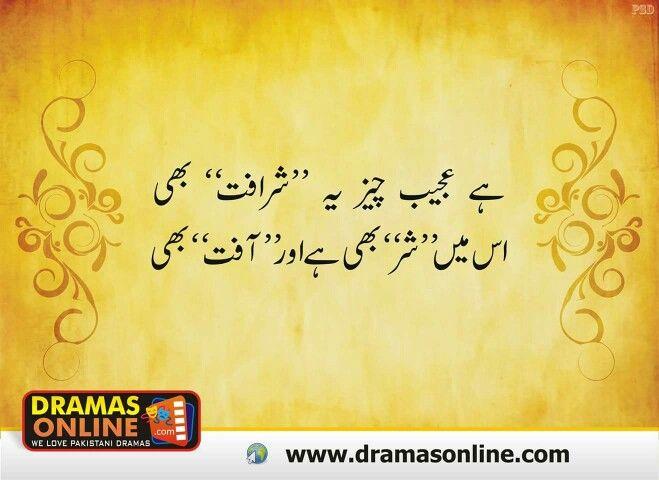 Betting Against The Grain Meaning In Urdu - image 7