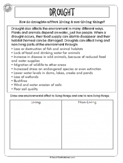 Environmental Affects | Teaching weather, Weather worksheets ...