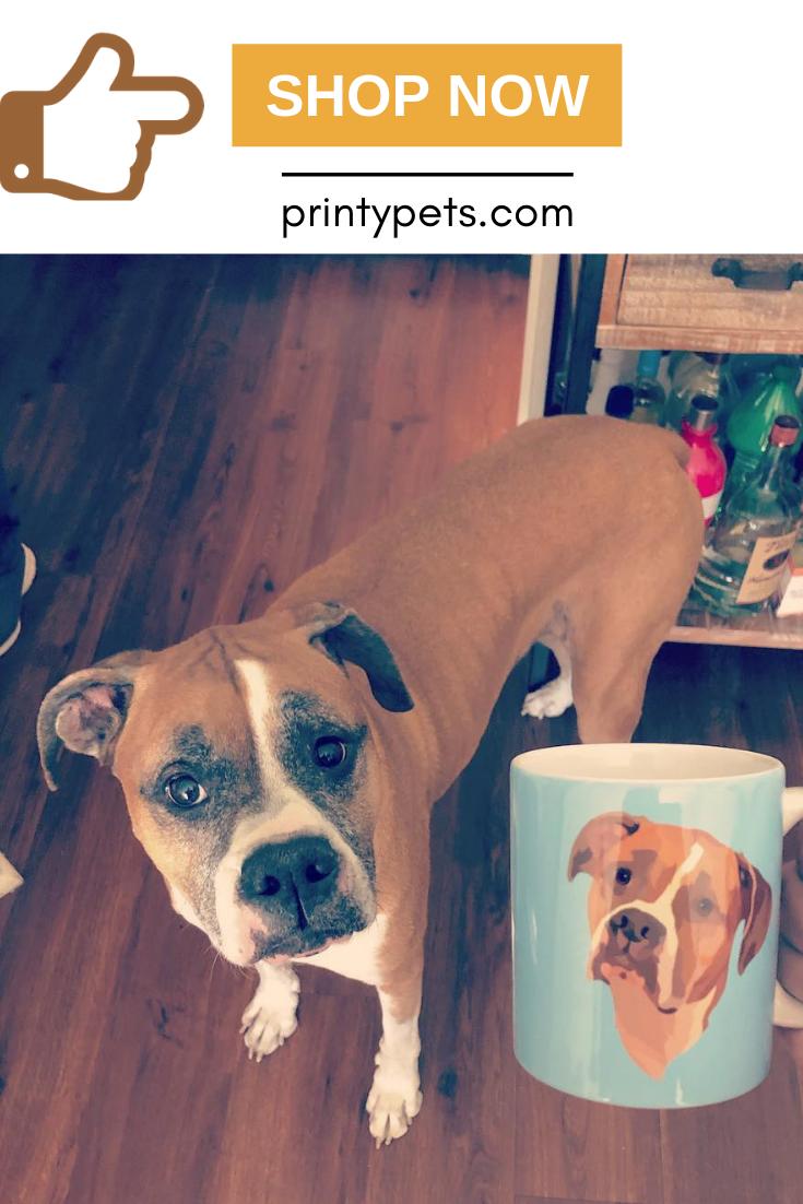 Custom Pet Print Coffee Mug Custom Pet Art Pet Cushions Colorful Backgrounds