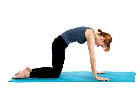 yoga exercises for back arthritis  exercise back workout