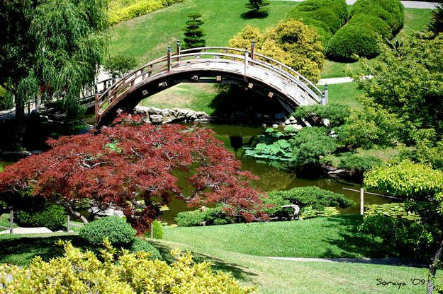 e135e9b9e6d28463d96eb168b404bd21 - Botanical Gardens Los Angeles Huntington Library