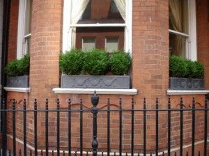 Box window boxes on bay window garden outdoor for Box bay windows for sale