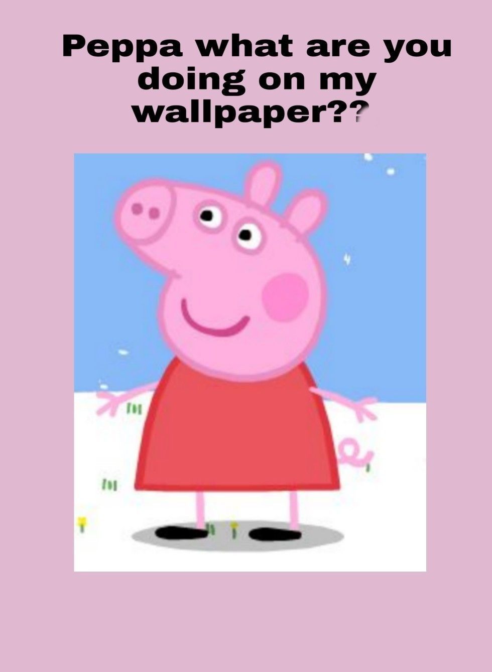 Peppa What Are You Doing On My Wallpaper Peppa Pig Wallpaper Pig Wallpaper Funny Iphone Wallpaper