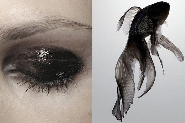 Вдохновение: Black and White