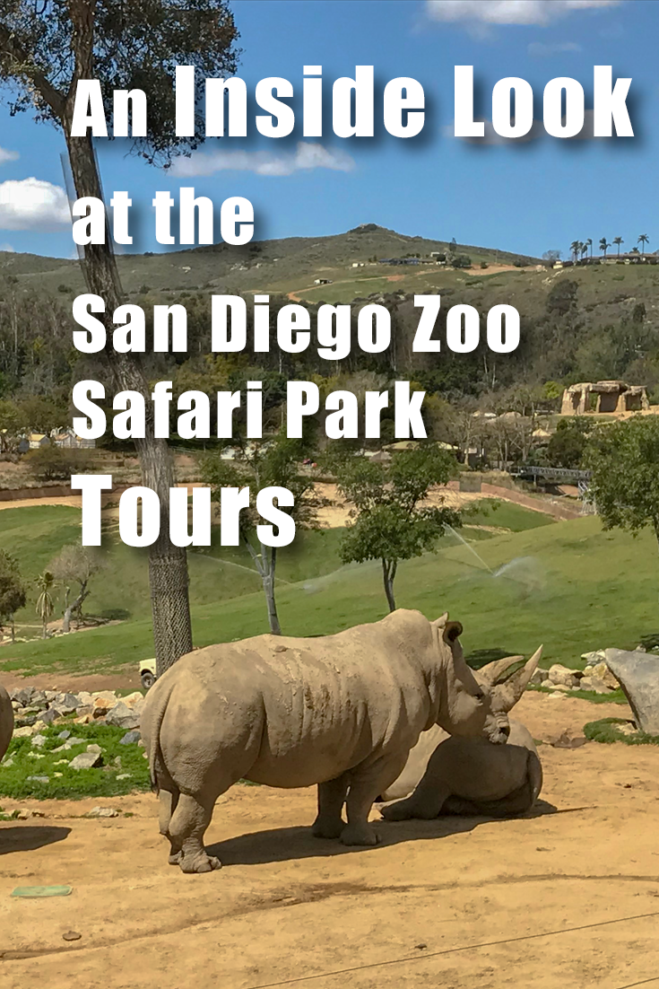 What To Expect At The San Diego Zoo Safari Park San Diego Zoo
