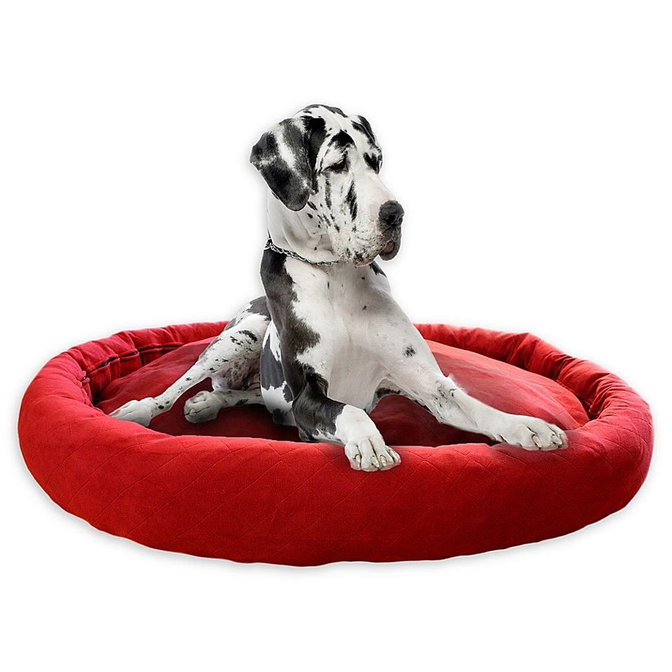 Mighty Xxl Complete Dog Bed In Red Dog Bed Pets Designer Pillow