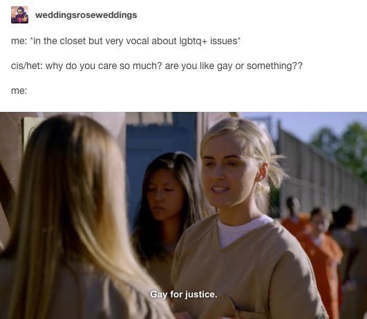 gay bi straight quiz