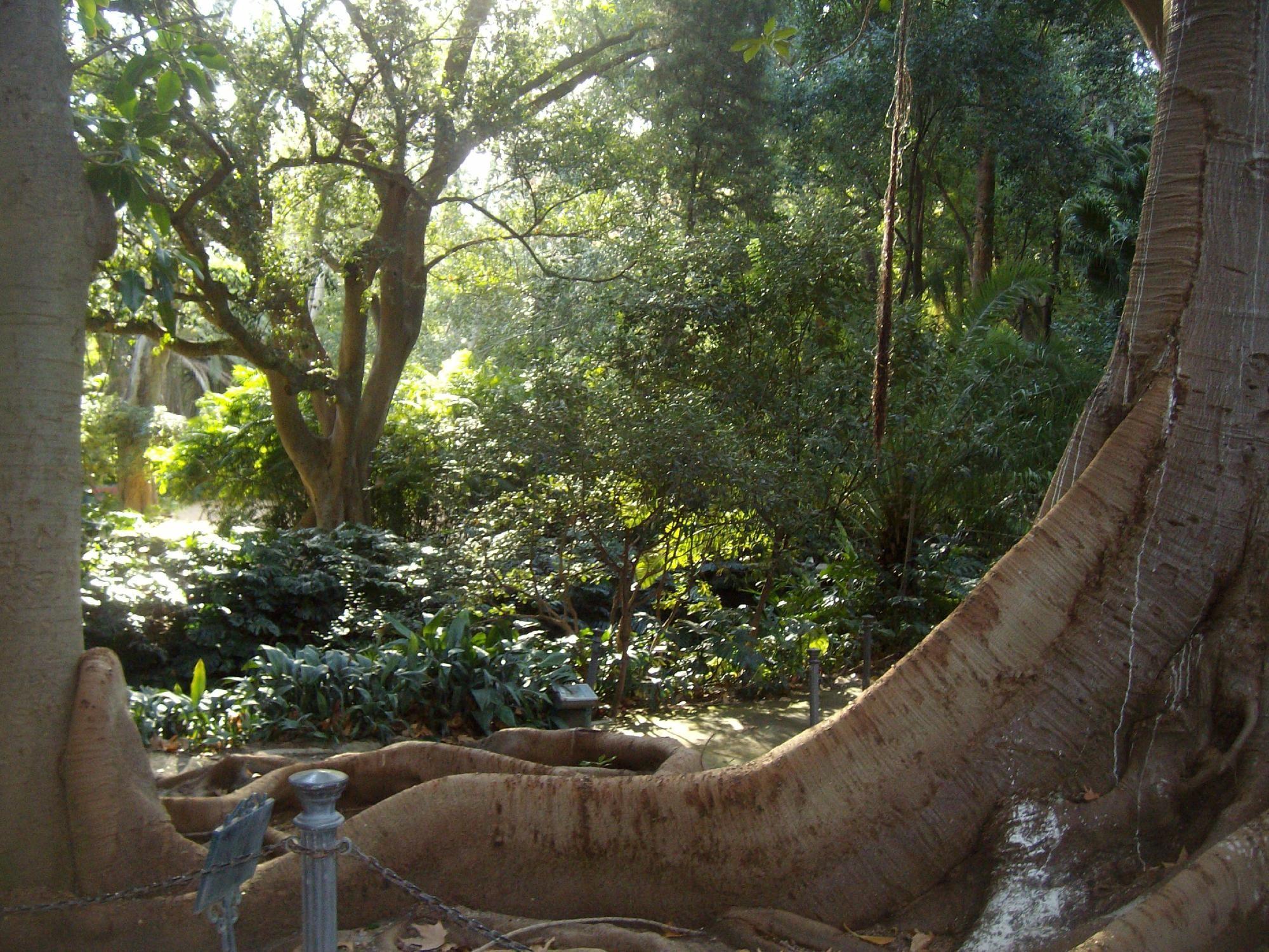 La Concepcion Jardin BotanicoHistorico de Malaga (Spain