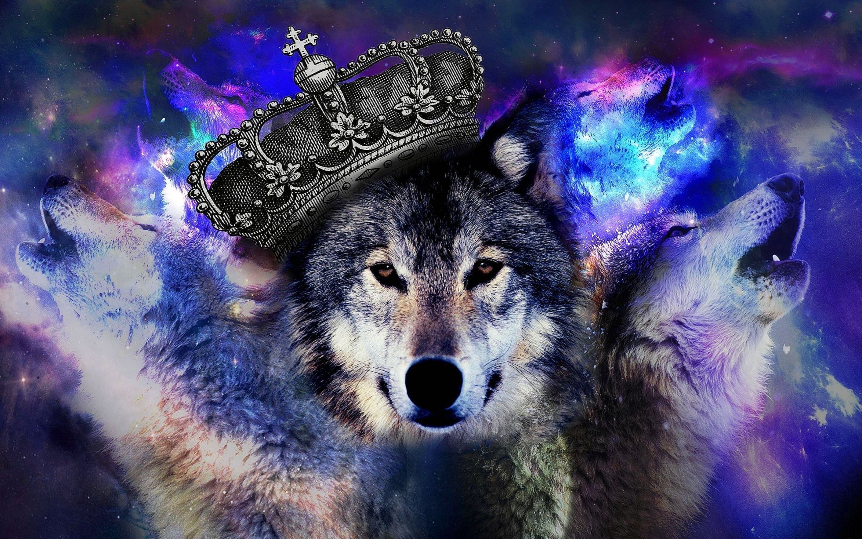 Cool Blue Wolf Wallpapers Cool Blue Wolf Wallpapers Wolf Wallpaper Anime Wolf Girl Galaxy Wolf