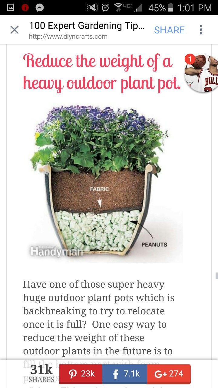 Lighten Pots Garden Containers Plants Porch Plants