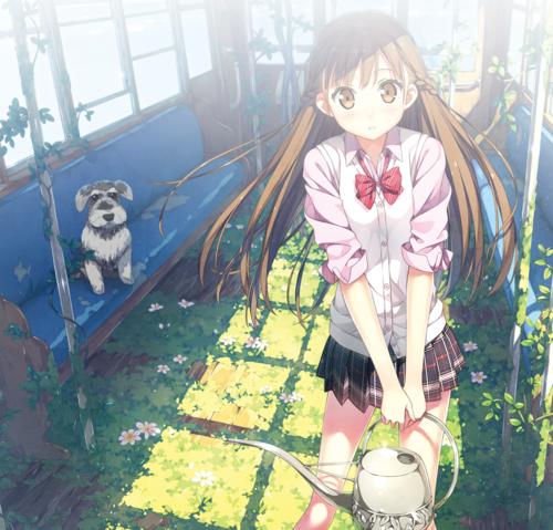 ログイン Comike Web Catalog Anime Pinterest Anime Neko And