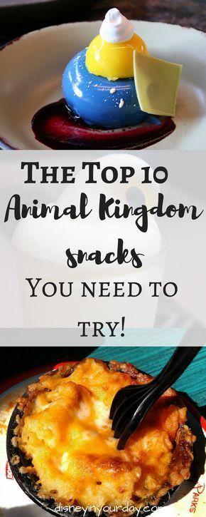 Top 10 Animal Kingdom snacks - Disney in your Day