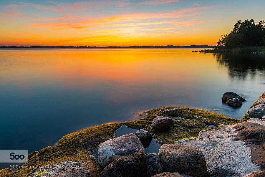 summer evening by Sundblick #nature