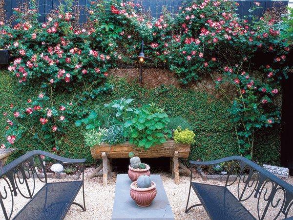 Small Garden, Seating Area Small Garden Pictures William Morrow Garden  Design Washington D.C.,