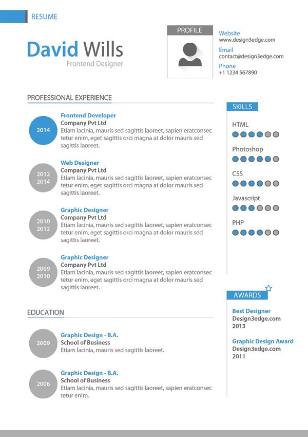 Professional Resume Template Design  Professional Resume Template