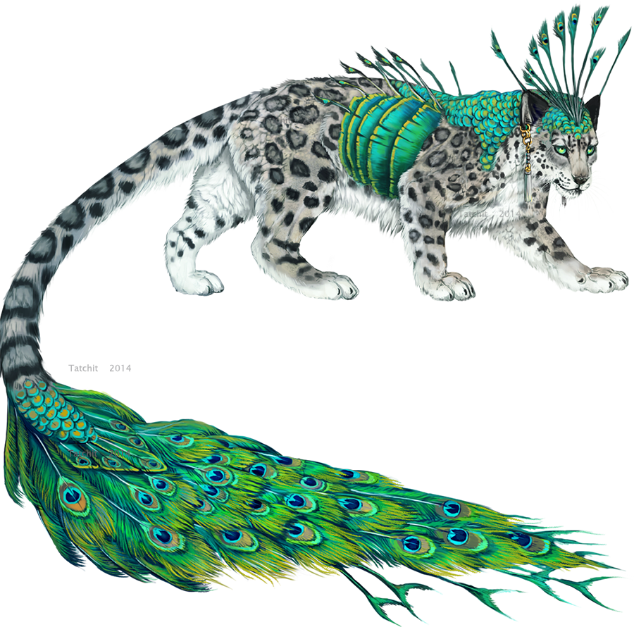 Peacocktiger