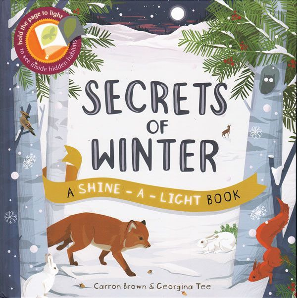 Usborne Shine A Light Books Custom Usborne Shine A Light Books  Lights Story Time And Products Design Ideas