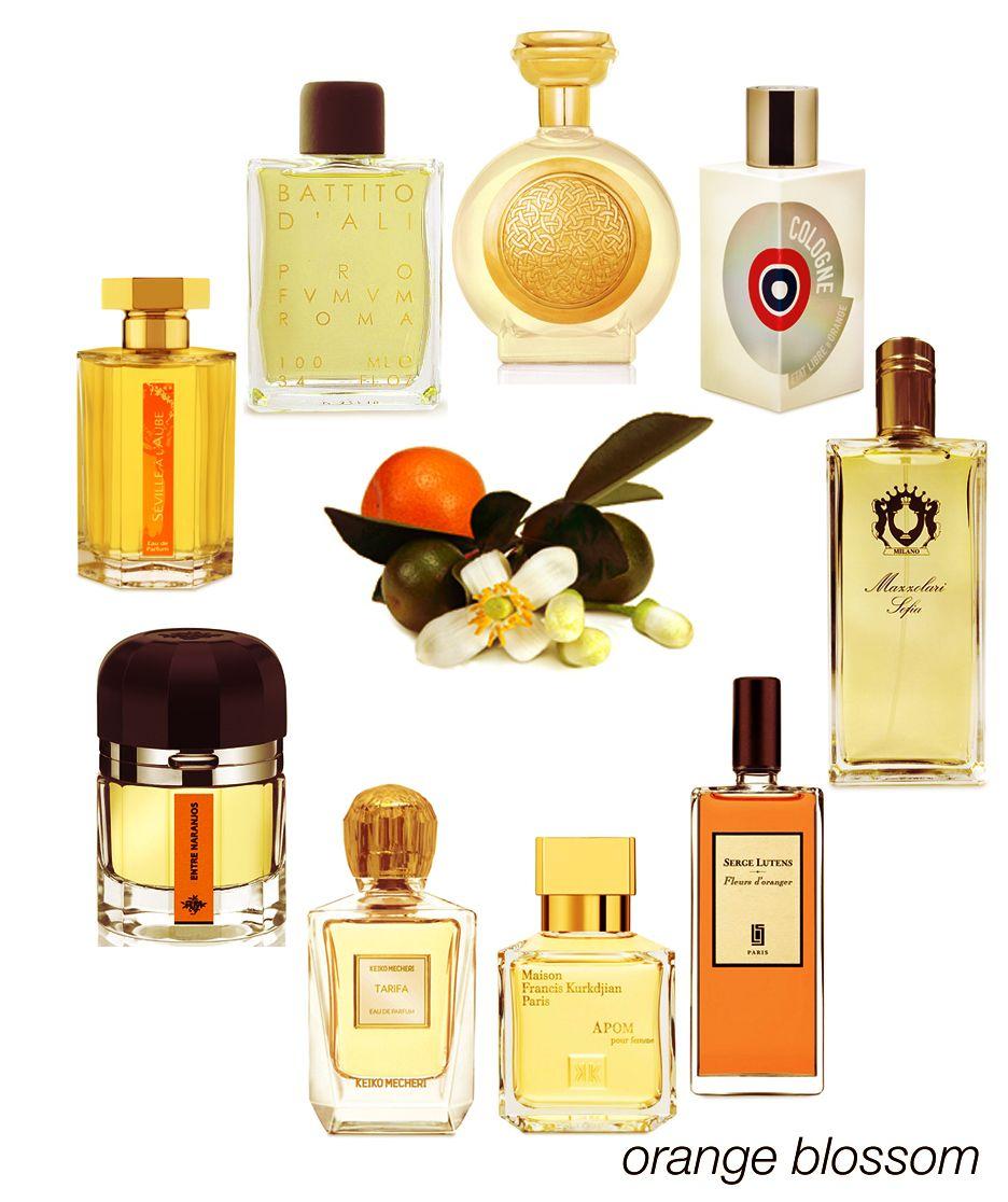 Fragrance Orange Blossom Perfume: A Perfect Combo Of Citrus And Floral, Orange Blossom: Hyde Park, ELDO Cologne, Sofia, Fleurs D