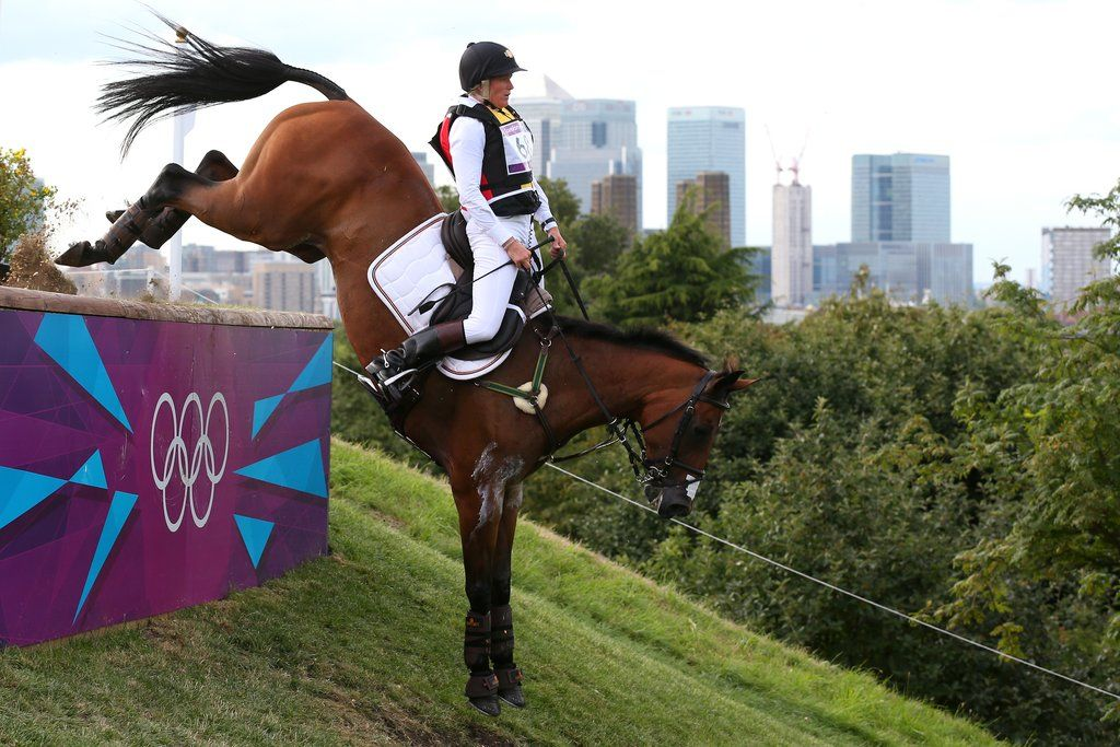 Sporty Steeds Olympic Sport Horses From A to Z Olympic
