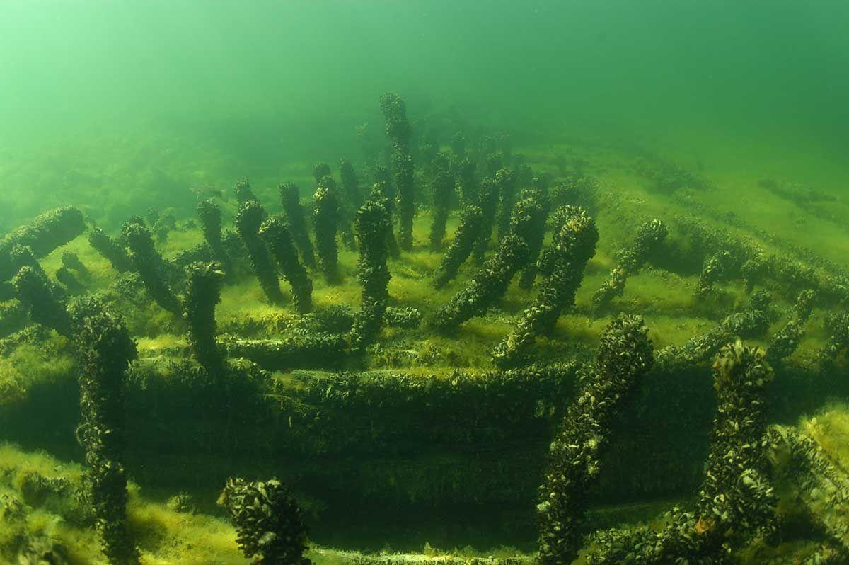 Louisiana 1887 Wi Shipwrecks Shipwreck Outdoor Louisiana