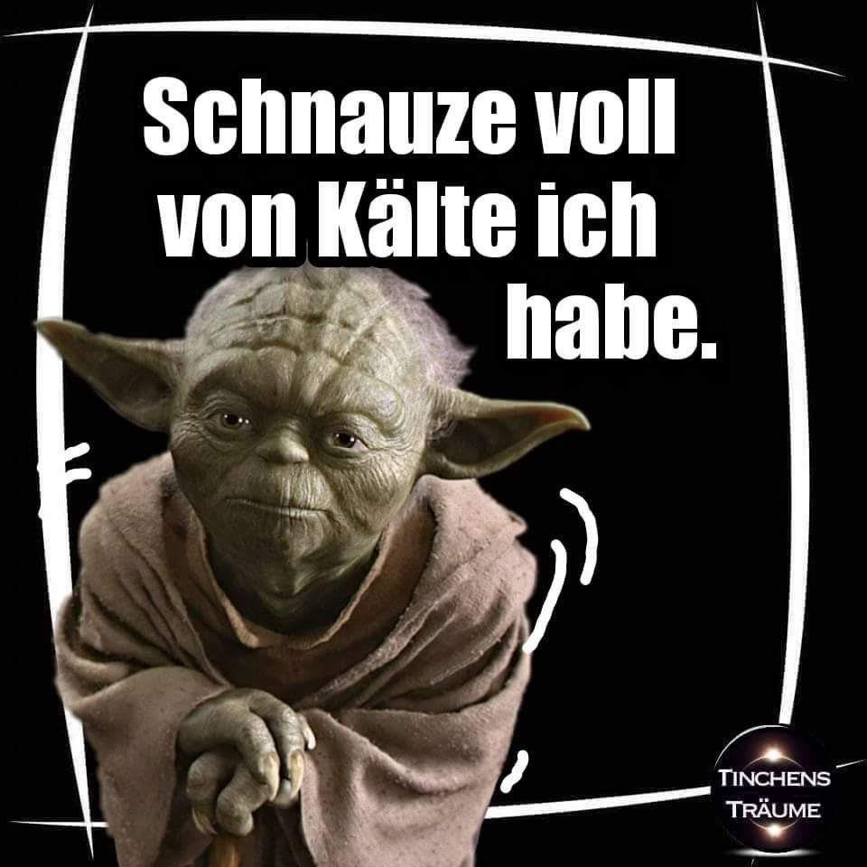 schnauze voll von k lte ich habe star wars yoda funny. Black Bedroom Furniture Sets. Home Design Ideas