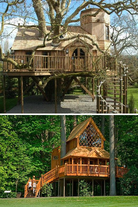 Sky High But Grounded 16 Incredible Tree Houses Photo