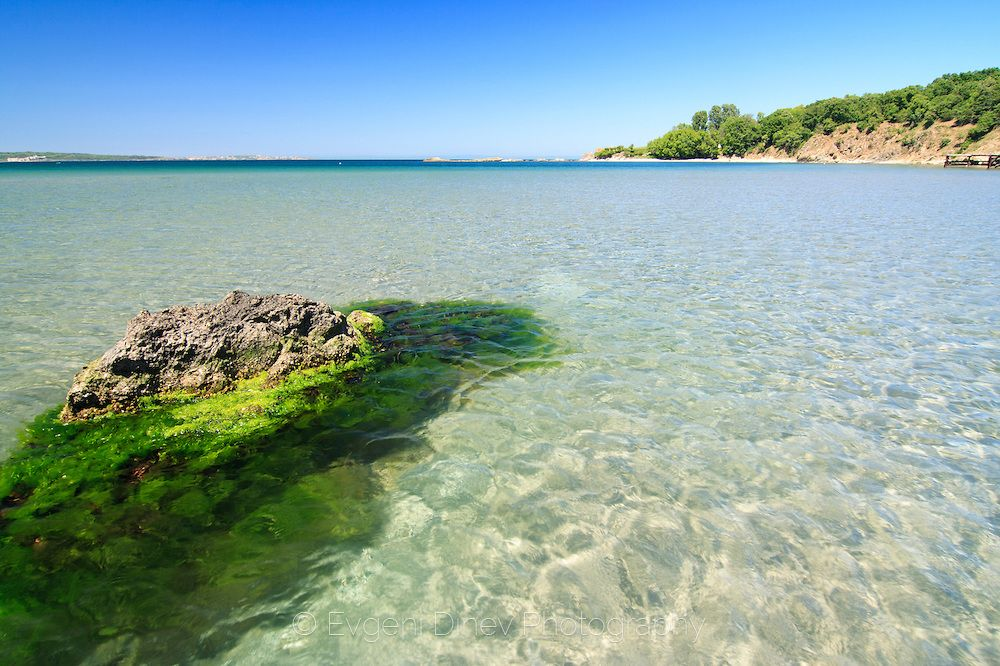 Ropotamo River - Black sea