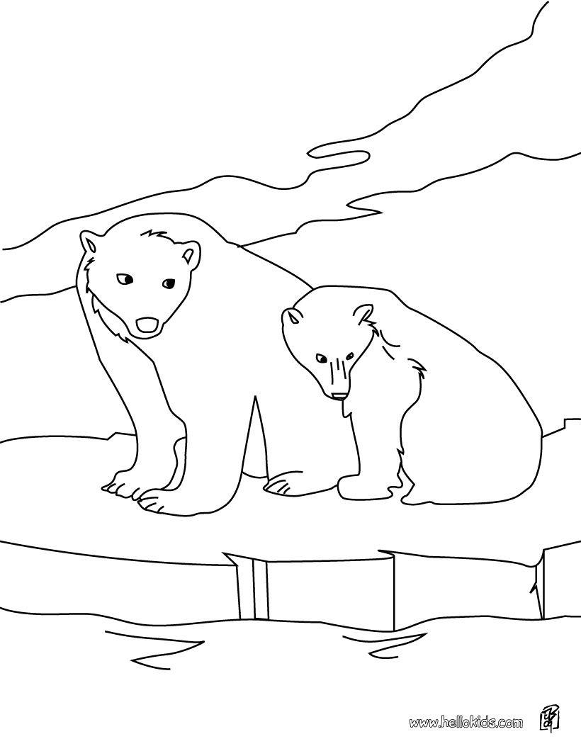 Polar bears coloring page | polar bears | Pinterest