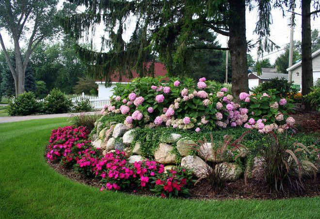 Pink hydrangeas. Garden Pink hydrangeas.. Garden Ideas Pink hydrangeas. #Pinkhydrangeas #Gardens .Landscape Design Services
