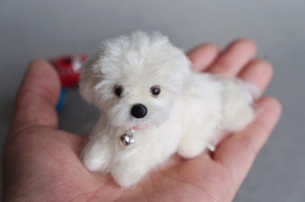 Needle Felted Maltese Dog Puppy Miniature Animal Wool White Maltipoo Shih-Tzu