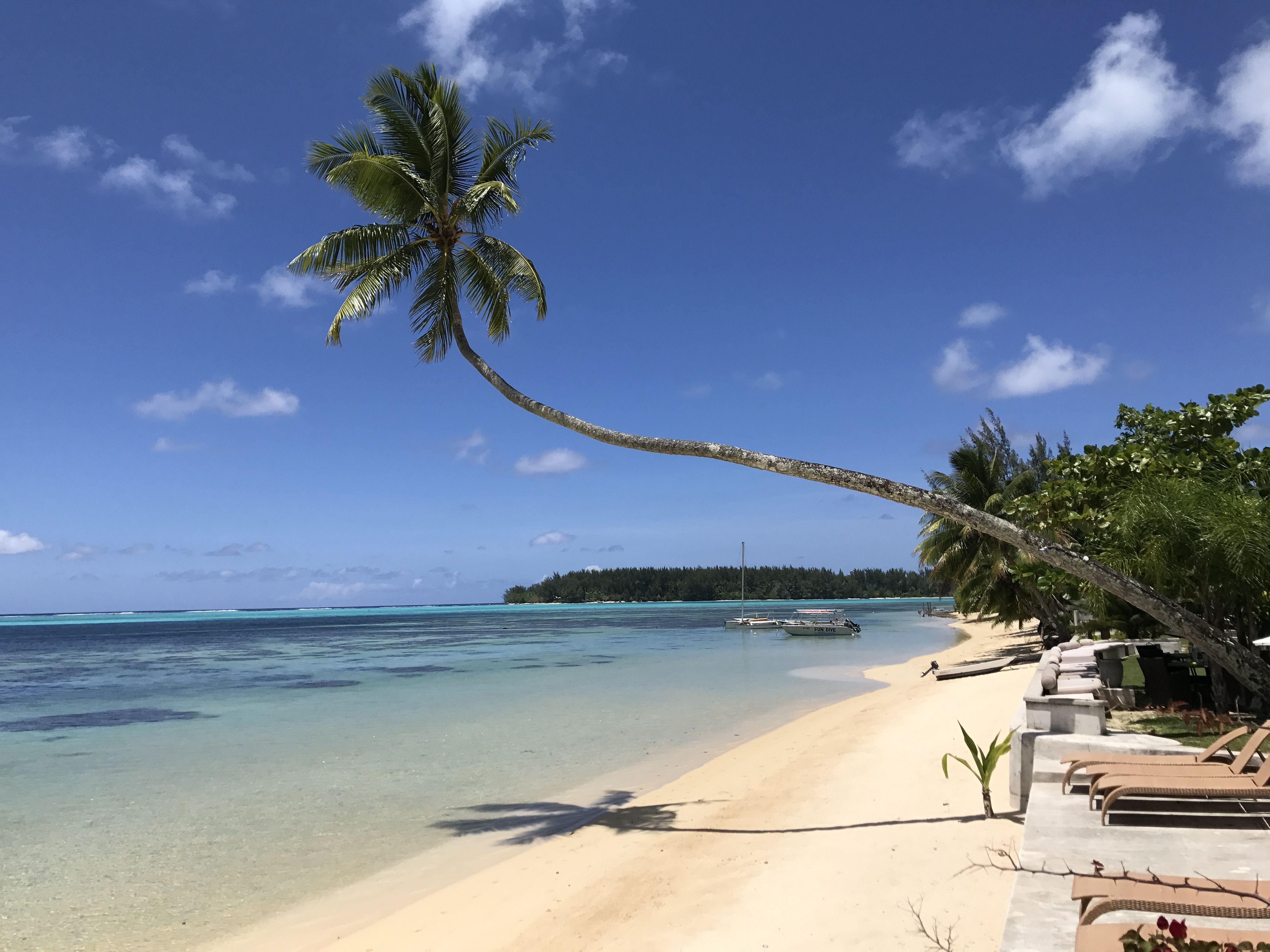 Stunning Boutique Beach Hotel In Moorea Tahiti Great