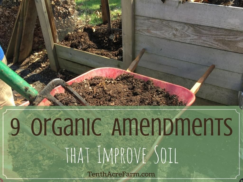 9 Organic Soil Amendments For Growing Vegetables