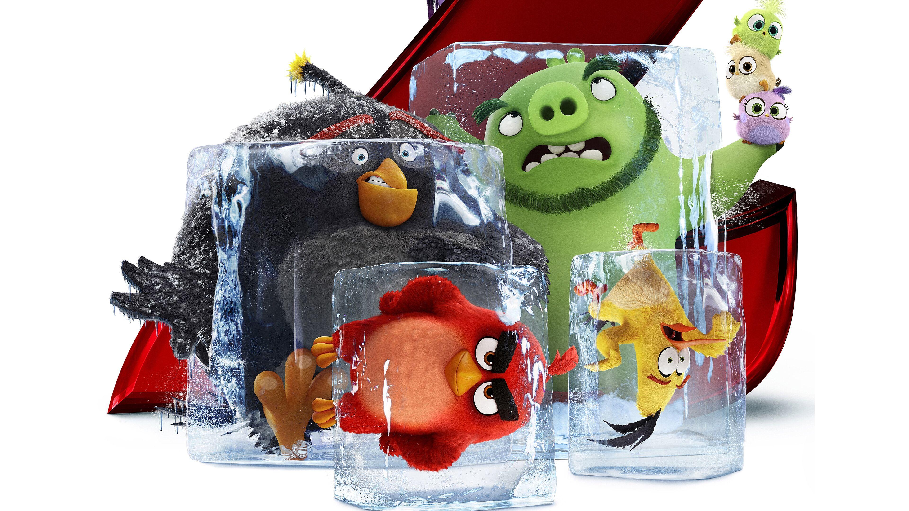 Angry Birds Movie 2 Bomb Red Chuck Leonard 8k Wallpaper 12 Angry Birds Movie Angry Birds 8k Wallpaper