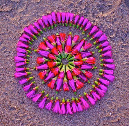 Sacred Flower Circles  by Kathy Klein