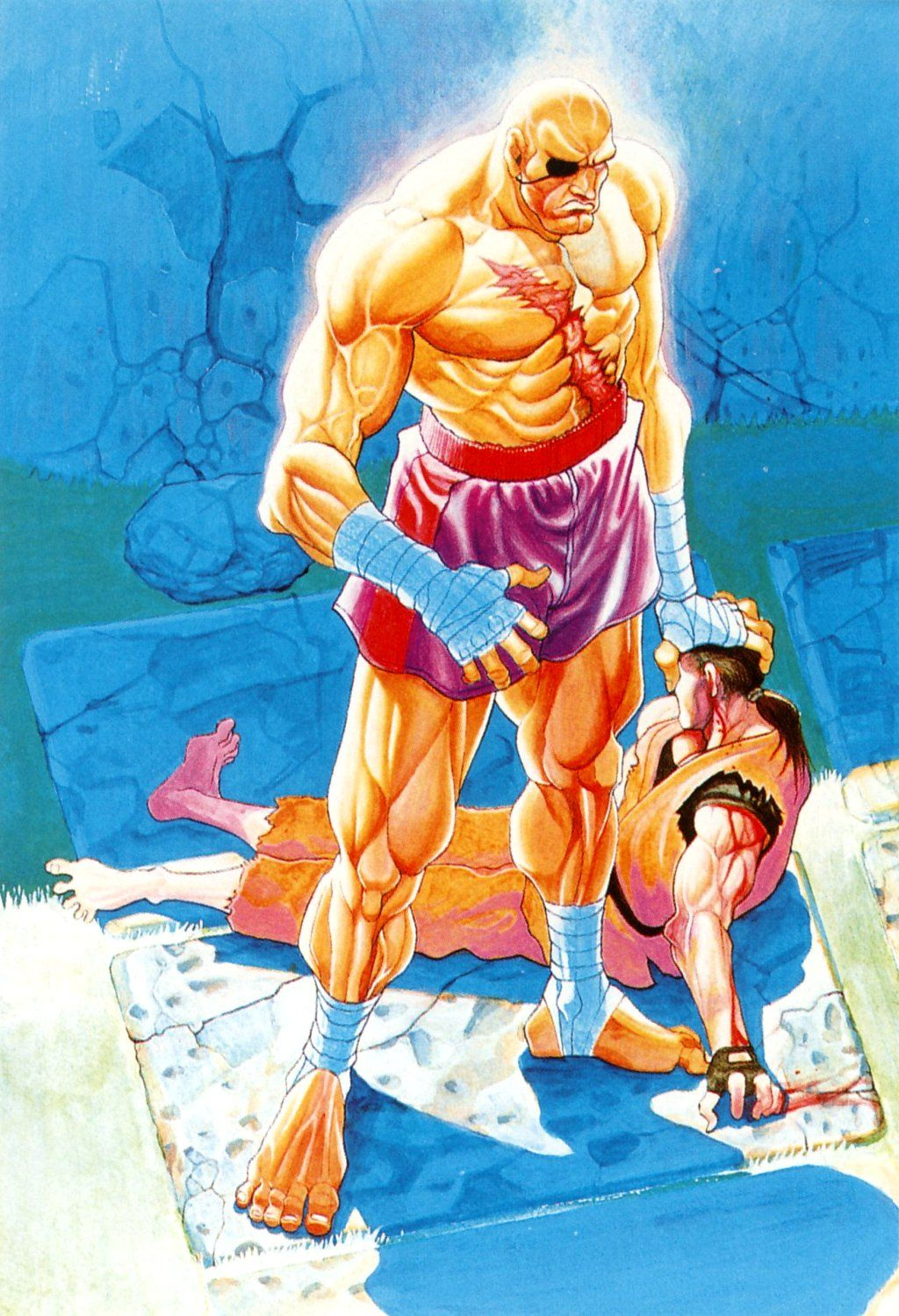 Street fighter characters dan street fighter image - Street Fighter Ii Sagat And Dan