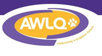 Animal Welfare League Clubsearch Animal Welfare League Animal Shelter Volunteer Adoption