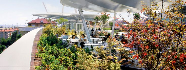 Green Roof Technology