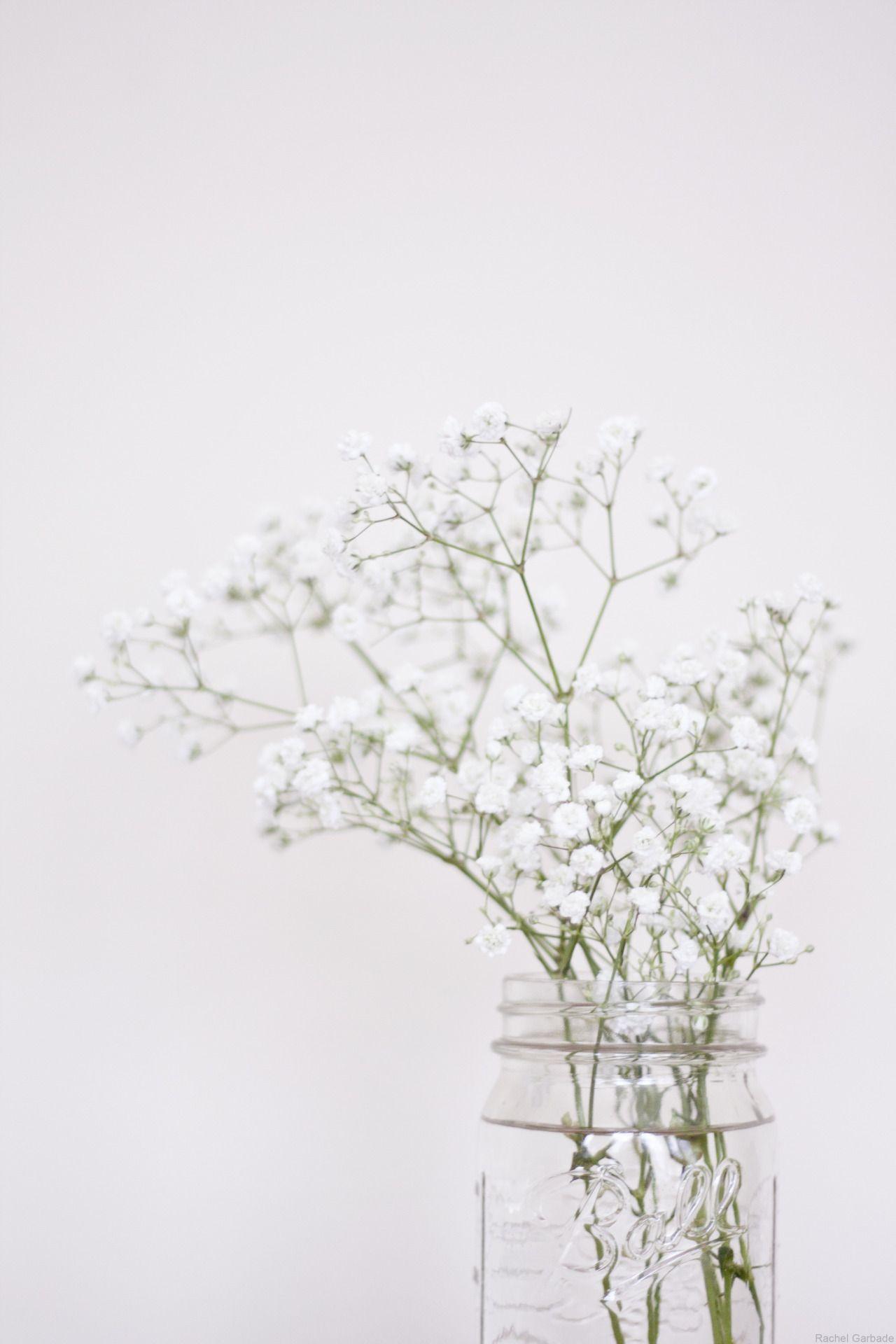 Floral Wallpaper Tumblr Aesthetic