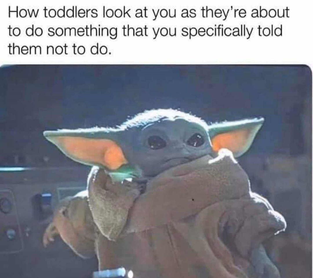 The Real Baby Yoda On Instagram Follow Yo Dafunniest Yoda Meme Funny Memes Funny