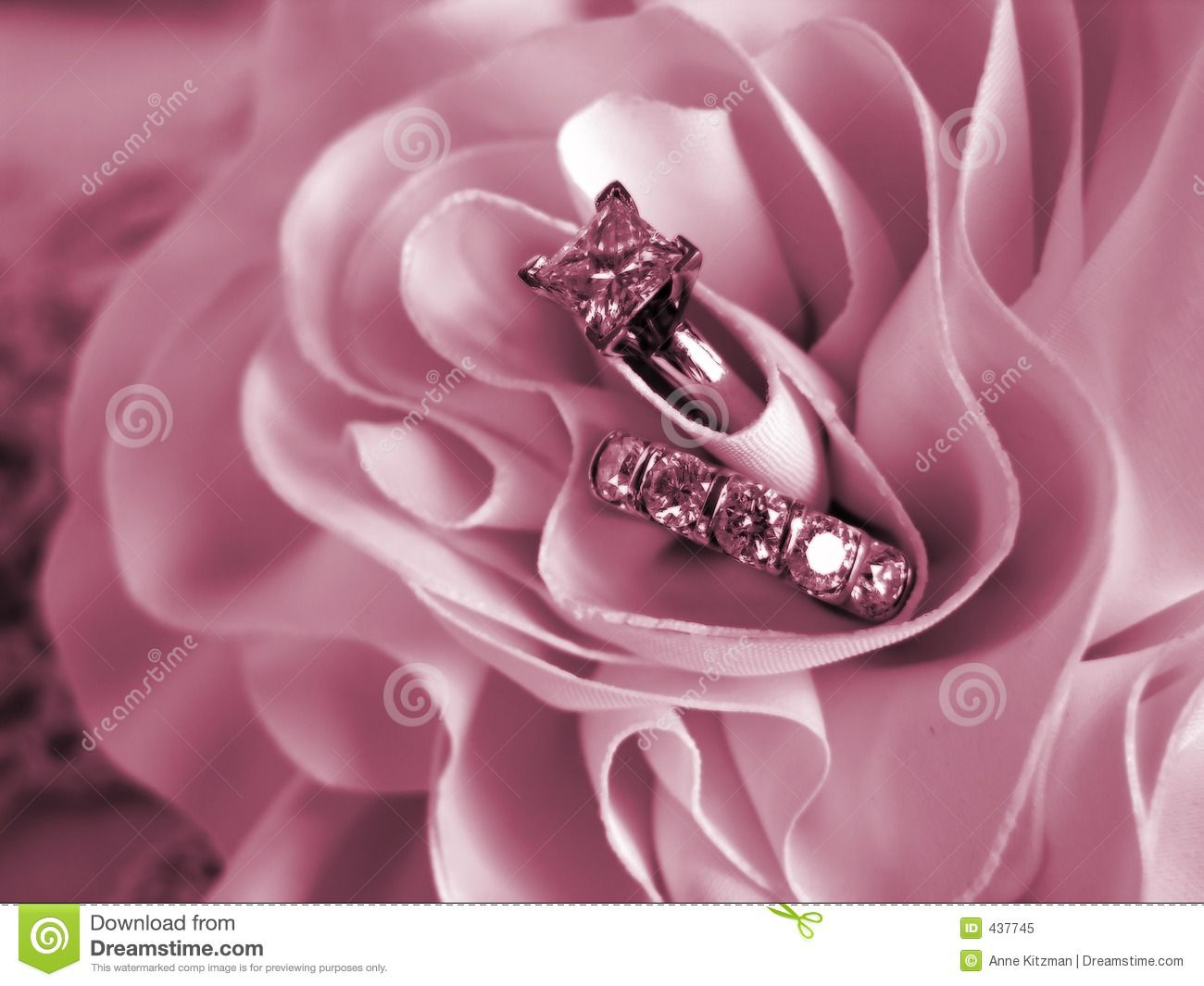 royalty stock photo wedding rings soft mood pink | Pink | Pinterest ...