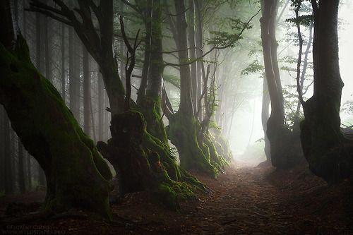 Elder Souls by FlorentCourty. From darkface on Tumblr