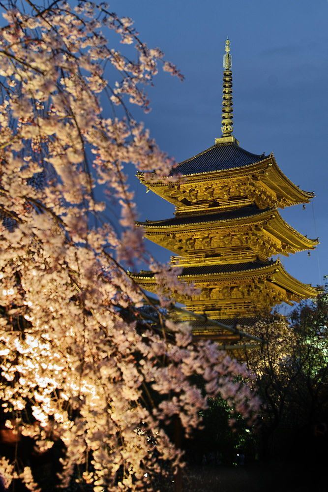 Sakura Pagoda by Azul Obscura on 500px