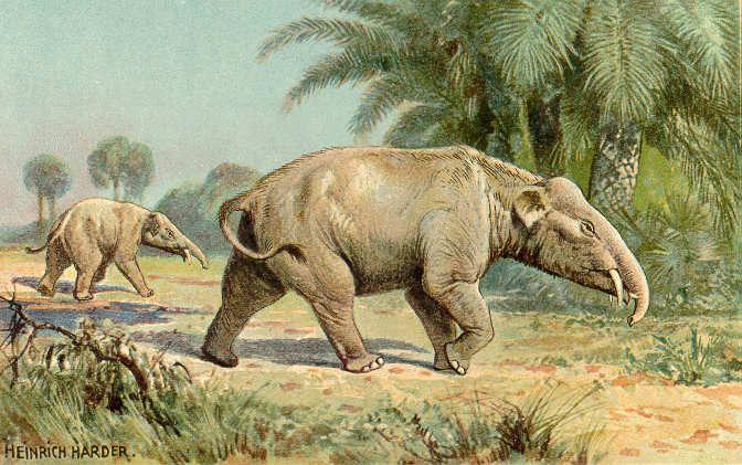 Paleomastodon - Heinrich Harder - Wikipedia, the free encyclopedia