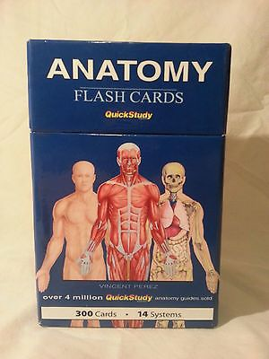 Vincent Perez Anatomy Flash Cards Quick Study 300 Cards Ebay