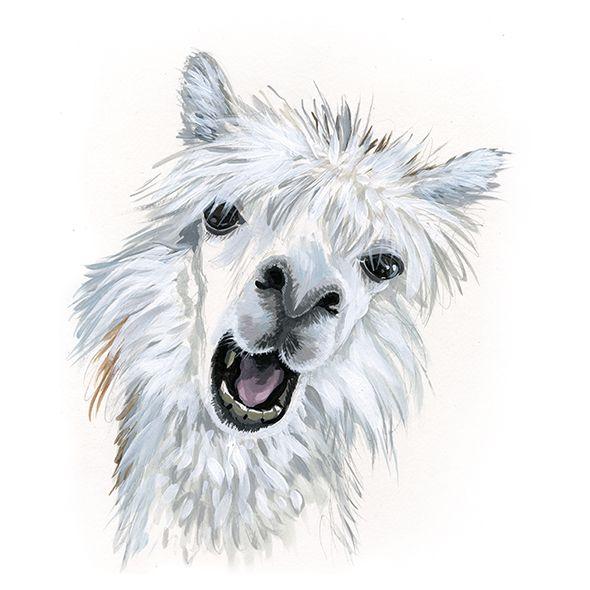 Llama - Christina Wald